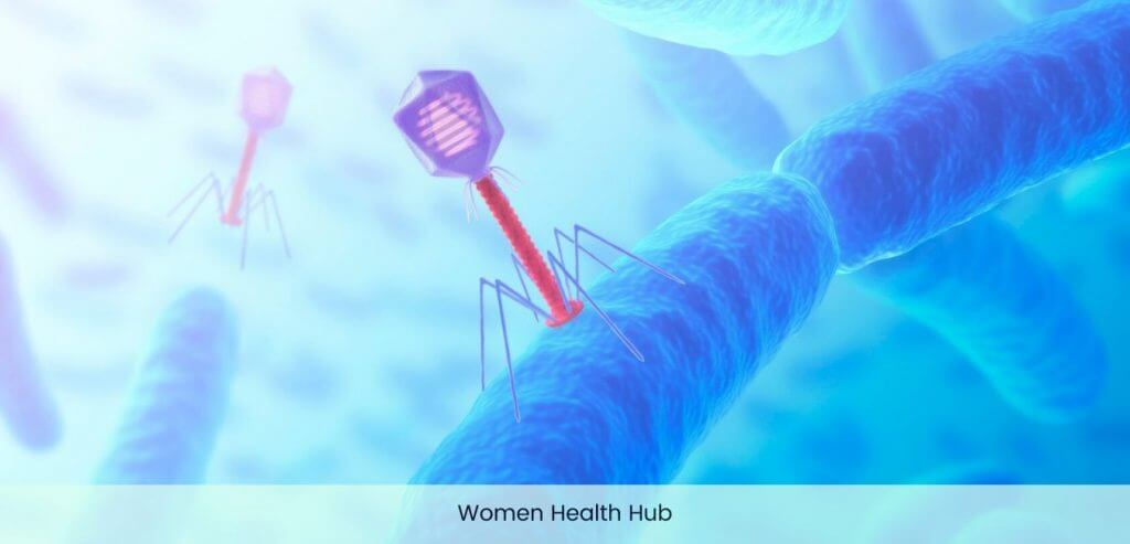 Women's Diseases Image - Women Health Hub